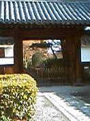 そうだ、京都行こう。
