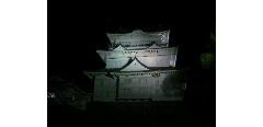 夜の小田原城